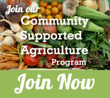Join our CSA Program