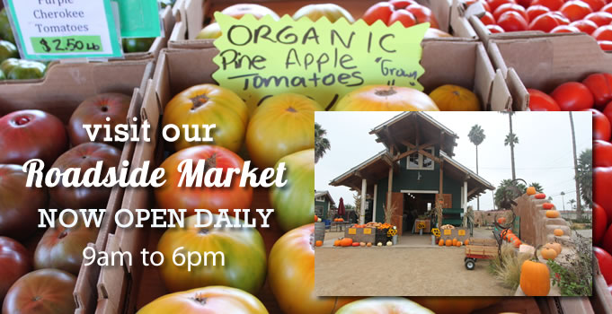 roadside-market-CLOSING NOV.22nd.Open weekends thru December.